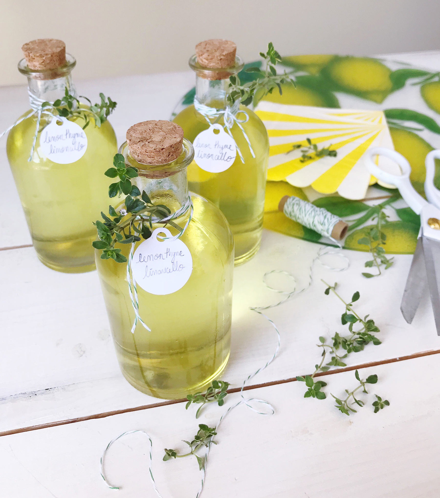 Diy archives domestikatedlife thyme limoncello hostess gifts solutioingenieria Image collections