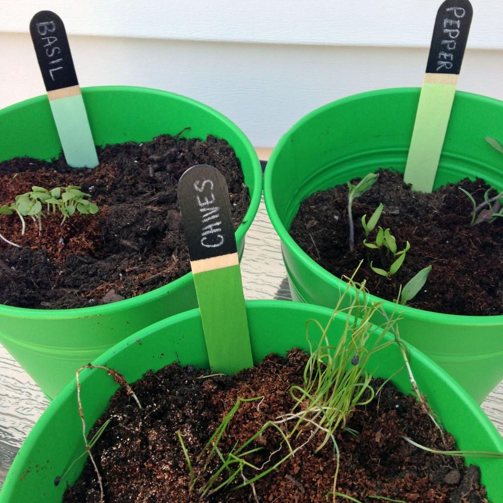 Garden Markers 5