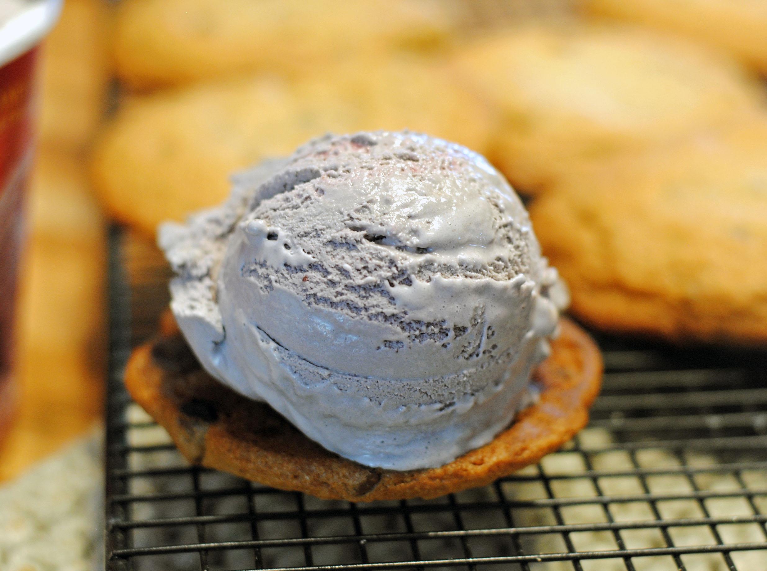 salted caramel ice cream sandwich 4