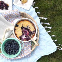 Blueberry Cobbler Picnic.