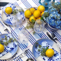 A Blue and White Summer Party.